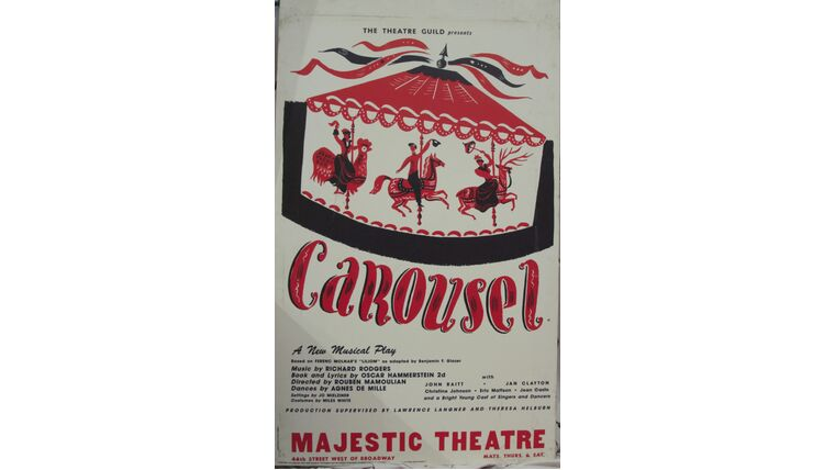 """Picture of a """"Carousel"""" Hanging Canvas"""