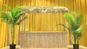Image of a Tiki Bar