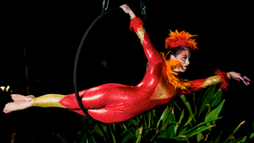 Image of a IONA - Contemporary Aerialist