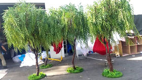 Image of a 8ft H - Weeping Willow Faux Tree