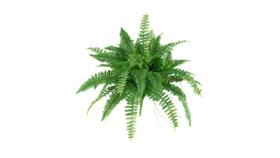 """Image of a Greens - Faux Boston Fern Bush 29"""" H"""