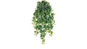 "Image of a Greens - Faux Hanging Ivy Spray - 36"" L"