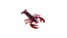 "Image of a Animal - Faux Atlantic Lobster, Red - 2"" H x 9.5"" L x 6"" W"