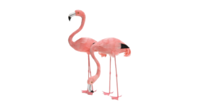 "Image of a Animal - Flamingo Real Feather (Head Up), Pink - 40"" H"