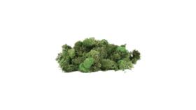Image of a Filler - Moss, Reindeer, Green
