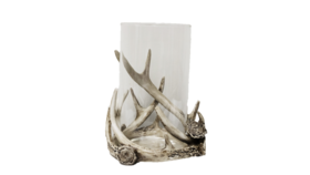 """Image of a Candle Holder - Stag Antler with Glass Insert - 7"""" H"""