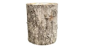 """Image of a Container - Birch Planter - 12"""" H x 10"""" dia"""