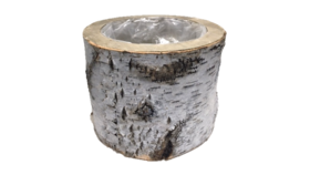 """Image of a Container - Birch Planter Tall - XS 7"""" H"""