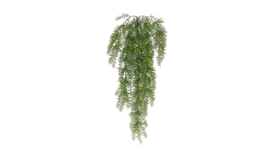 "Image of a Greens - Faux Hanging Wild Grass - 30"" L"