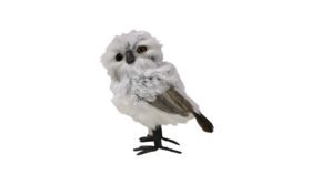 "Image of a Animal - Owl, White - 8"" H"