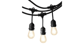 Image of a Lighting - Festoon | Garden String, Black - 24 bulbs, 48' L
