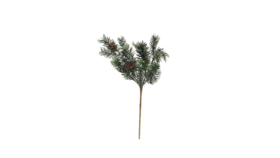 Image of a Christmas - Fir with Pinecones Pick, Green