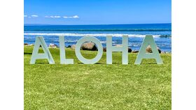 Image of a ALOHA - Lawn Letters