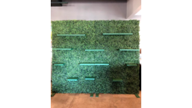 Image of a 4' x 9'  Hedge Wall w/ Shelves (Green)