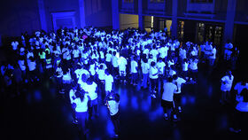 Image of a UV Black Lights