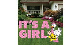 Image of a Yard Sign - It's A Girl - 10 pieces plus stakes