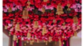 Image of a FLORAL CEILING